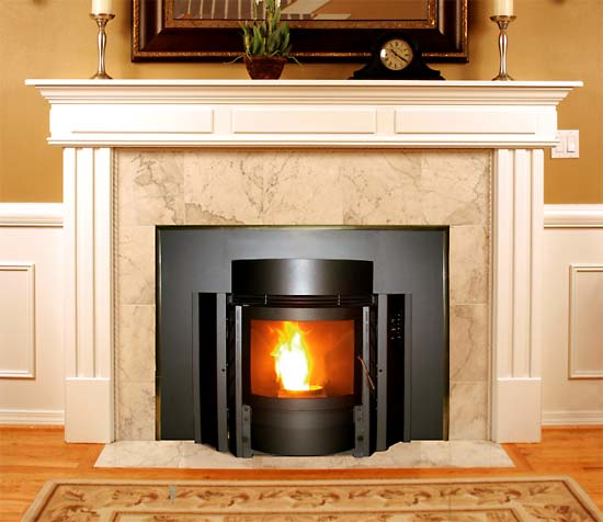 Thelin Stoves T 5000 Fireplace Insert Chimney Sweeping